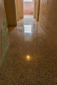 Diamond Restored Terrazzo in Florida by SafeDry
